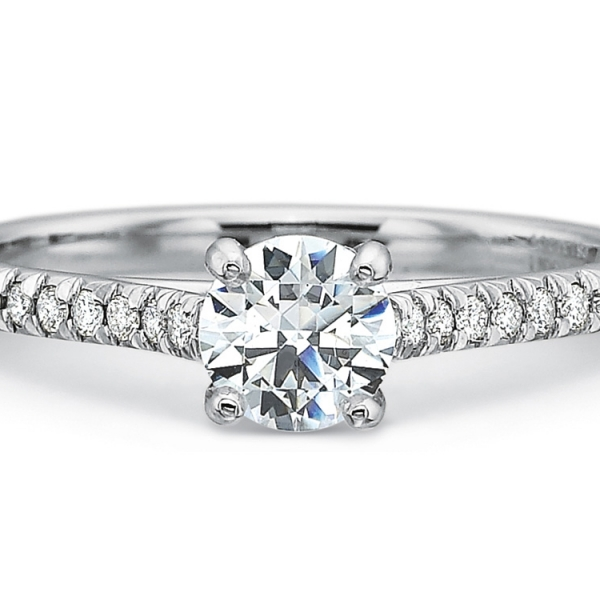 Precision Set Engagement Ring | 18K White Gold Pavé Diamond Ring | Style No. 001-711-01025